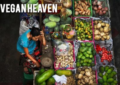 vegan-heaven